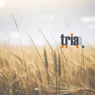 News Tria