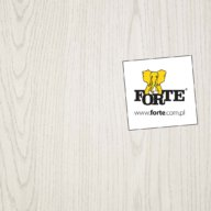 Forte: more effective marketing with eLeader Mobile Visit